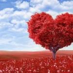 Hướng dẫn bói tình yêu qua tên chính xác nhất