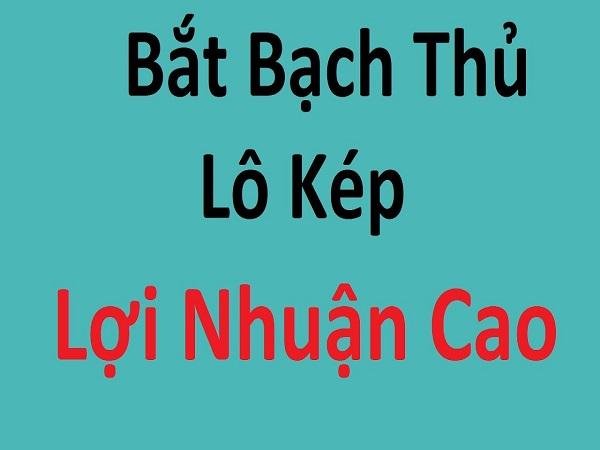 cach-bat-bach-thu-lo-kep
