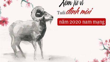 Chi tiết vận hạn Đinh Mùi năm 2020 dành cho nam mạng