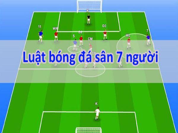 Luật thi đấu bóng đá sân cỏ nhân tạo 7 người mới nhất