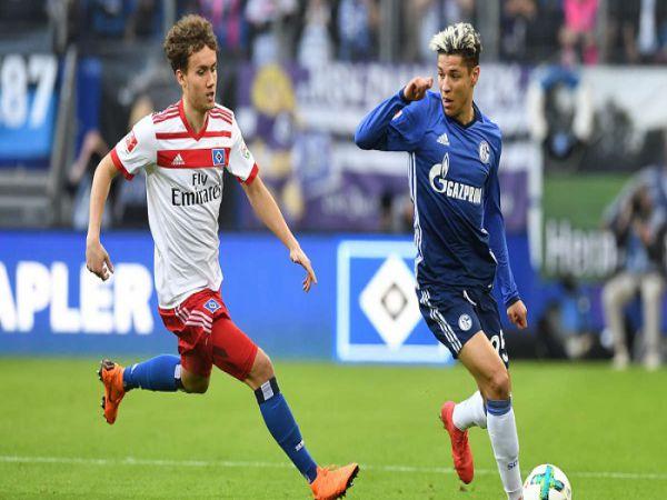 Nhận định kèo Schalke 04 vs Hamburger, 1h30 ngày 24/7